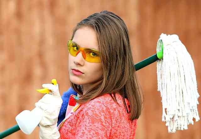 internet marketing housecleaning